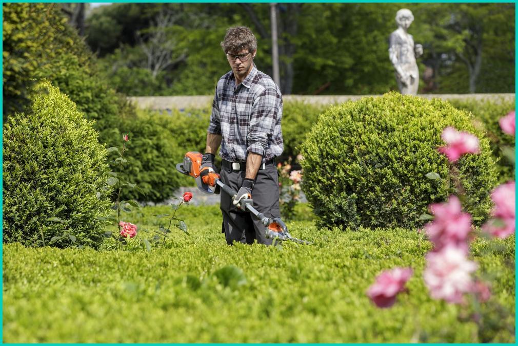 bonus ristrutturazione giardino